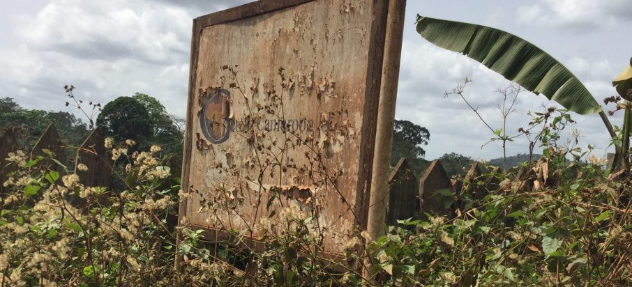 Virtual mining in Cameroon: corruption, failure and profits